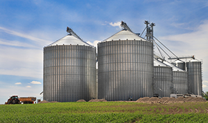 Monitor grain bins